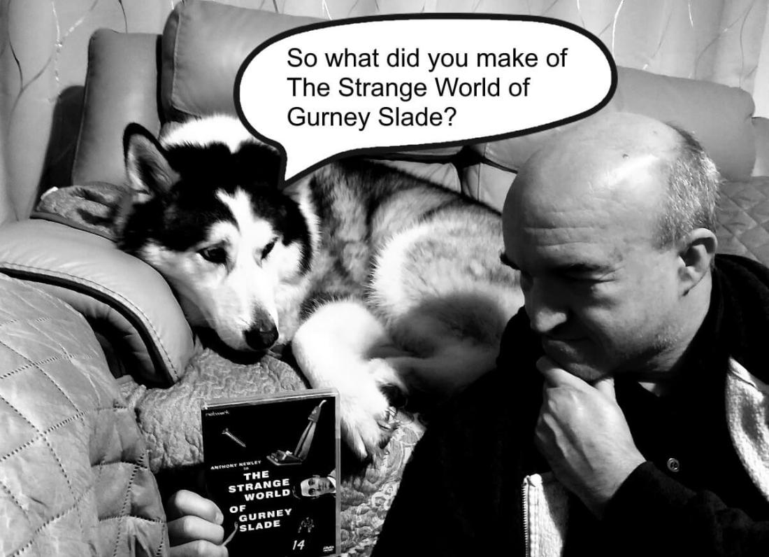 Man and dog look at a DVD